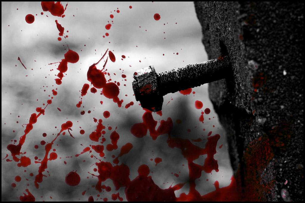 Рвут в кровь 6 фотография