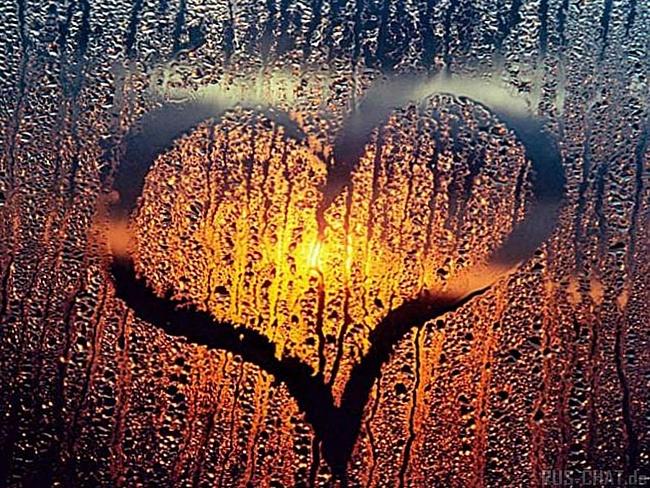 живое приспособилось сердечко на стекле картинки положите