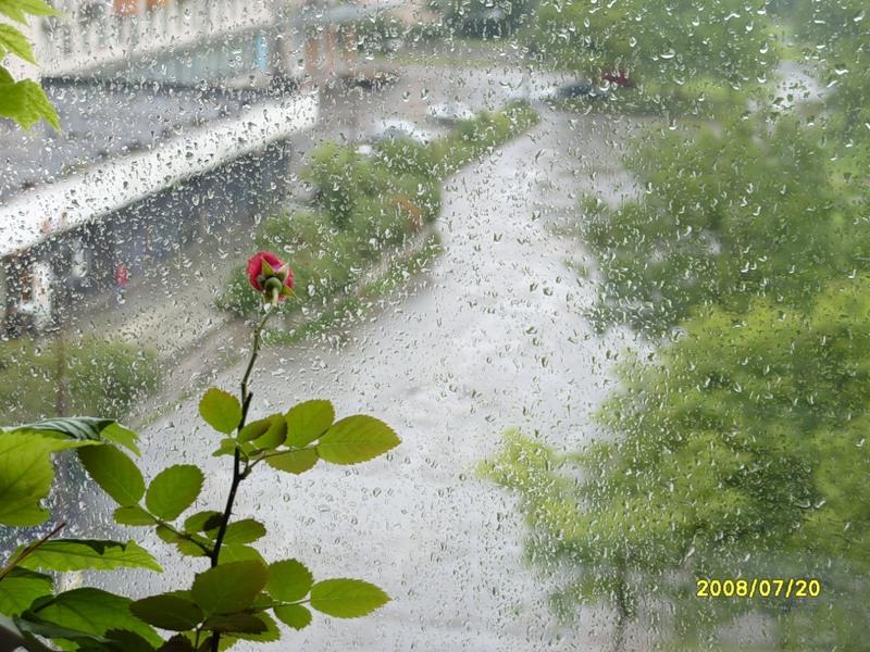 За окном вновь непогода
