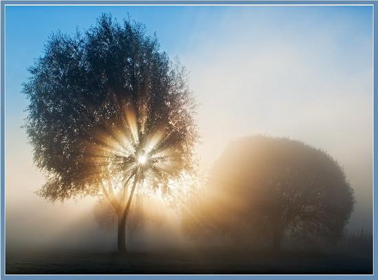 Прекрасное осеннее утро картинки