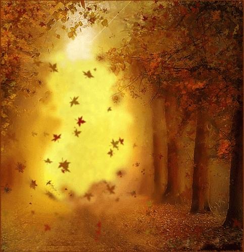 Листья золотые падают летят скачать песню