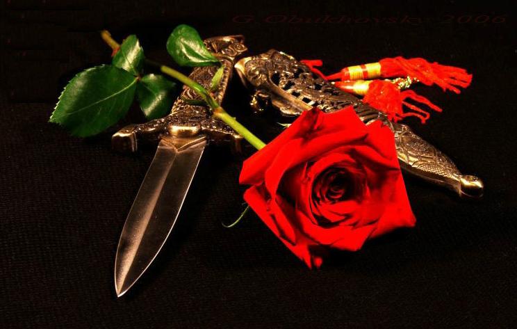 Для валентинок, картинки о преданной любви