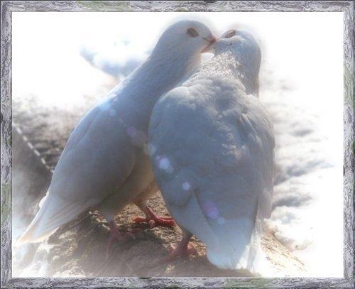 Серебряная свадьба любовь безуглова