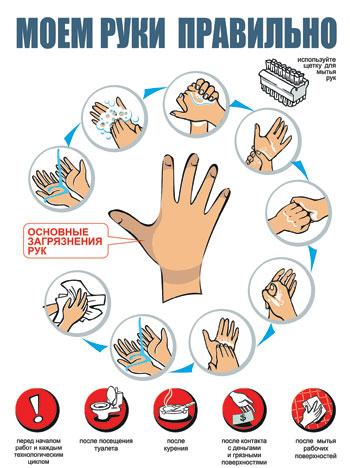 Руки чаще других частей тела соприкасаются с окружающими.