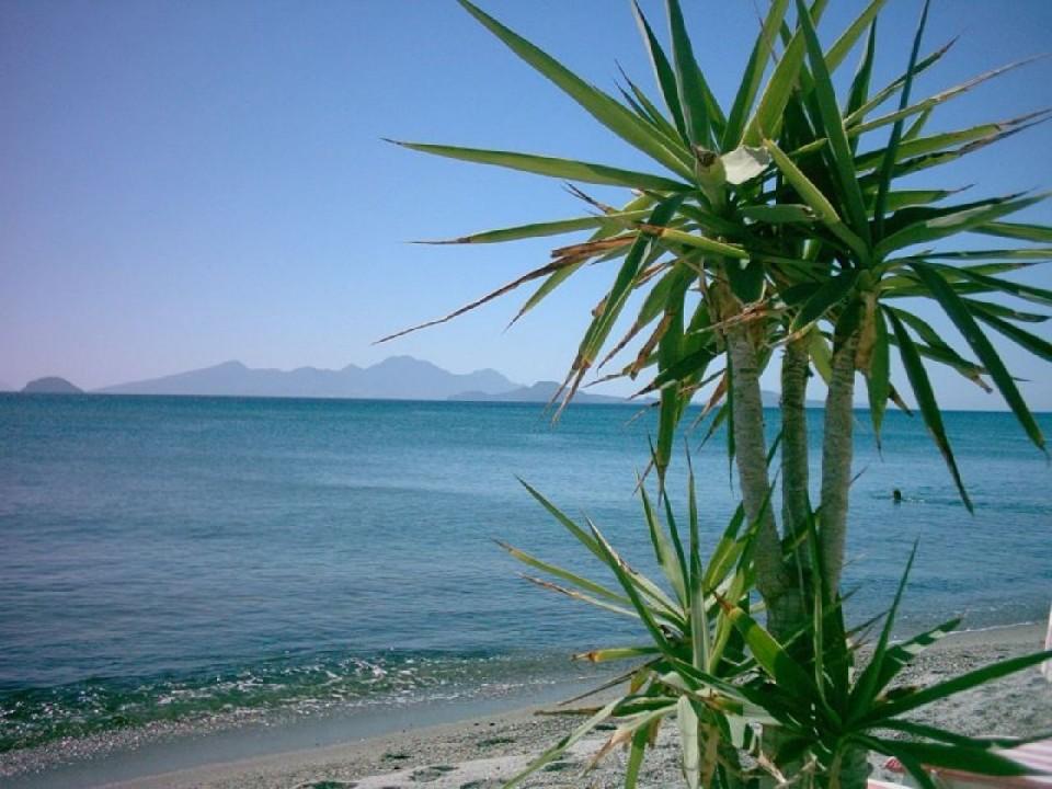 Остров Кос - родина Гиппократа.  В его честь здесь каждый год устраивают красочные костюмированные...