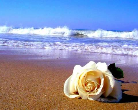 http://www.stihi.ru/pics/2012/09/11/562.jpg