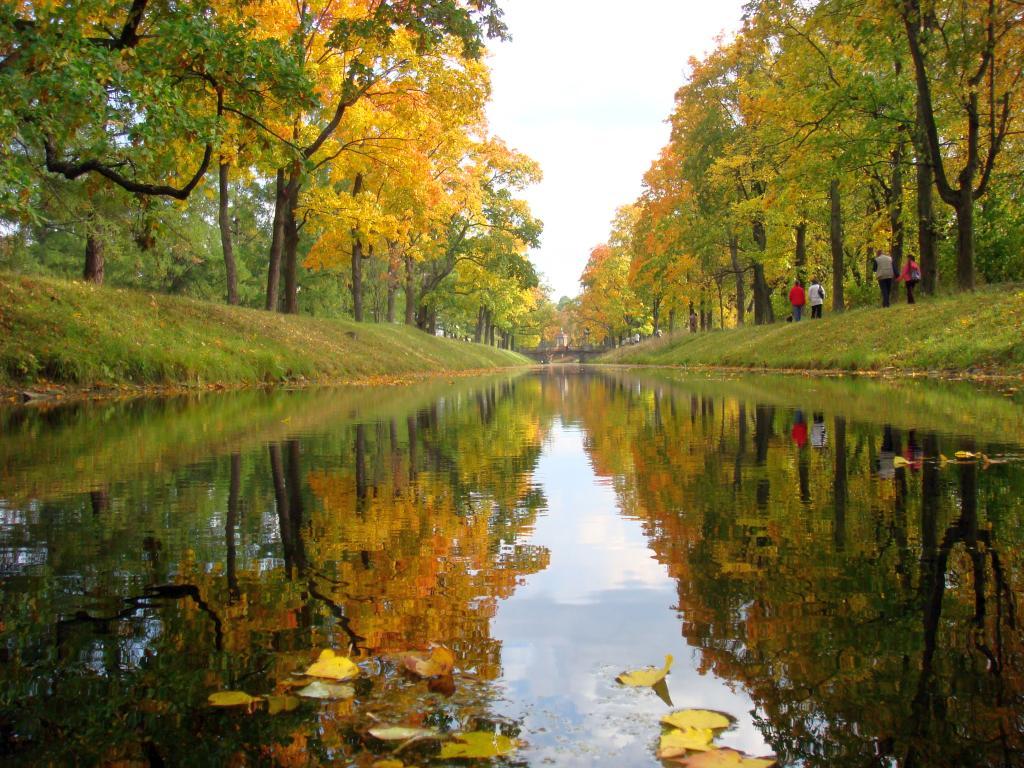 144 это осень осень золотая эдуард