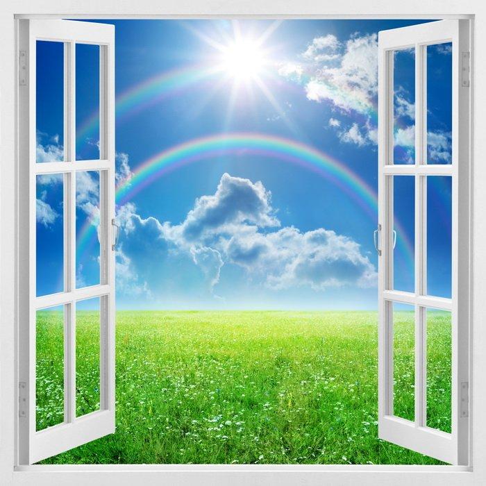 окна ру: