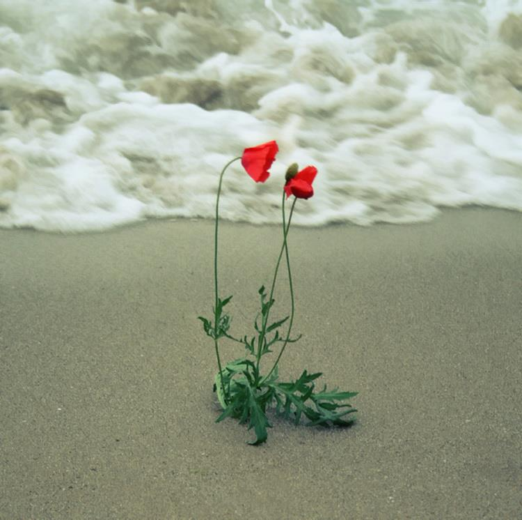 фото двое у моря