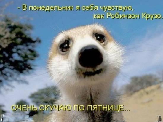 https://www.stihi.ru/pics/2012/09/27/3745.jpg