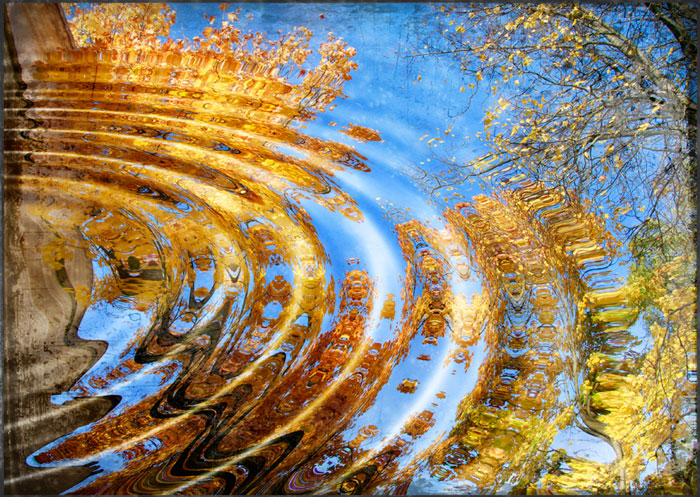 Теплая осень ангелина яковенко
