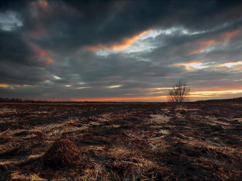 http://www.stihi.ru/pics/2012/10/23/11425.jpg