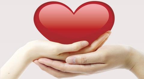 Сердце в ладонях картинка