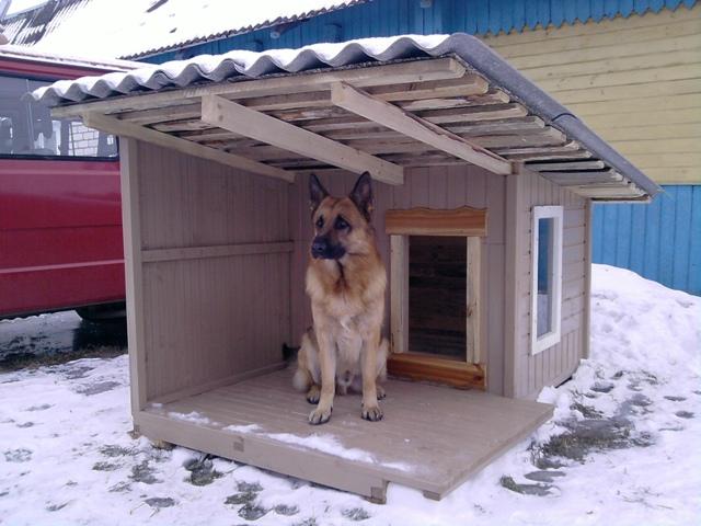 Делаем собачью будку