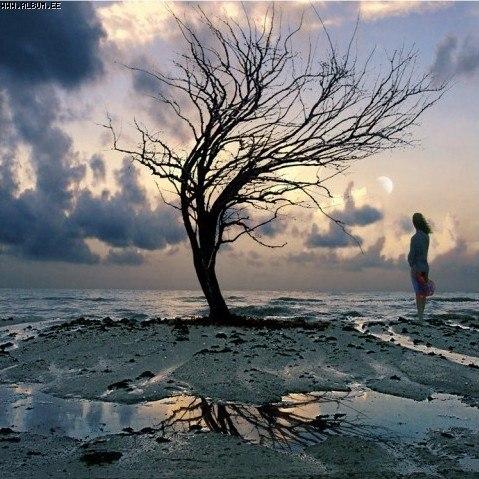 http://www.stihi.ru/pics/2012/11/10/10895.jpg