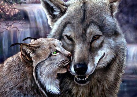 сказка про волка и красную шапочку