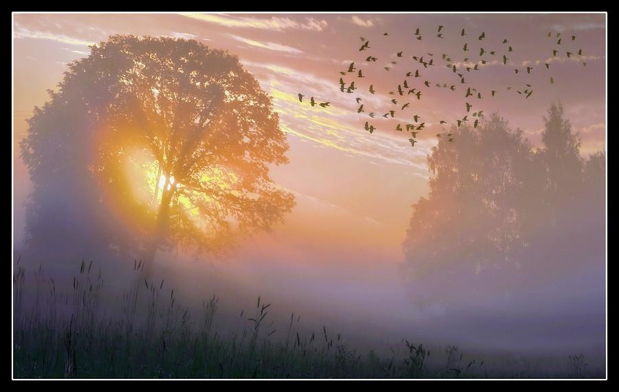 На этой странице вы можете прослушать и скачать а туман на небо возвращается от танцы минус в mp3 формате