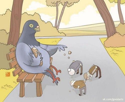 изображение рывками: