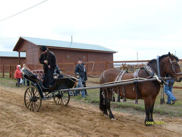 Бидарка для лошади своими руками 58