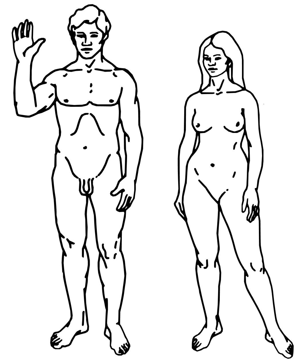 Раскраска голого тела 3 фотография