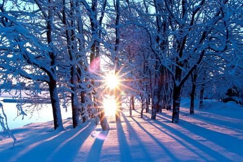 Зимнее Солнце Скачать Торрент - фото 8