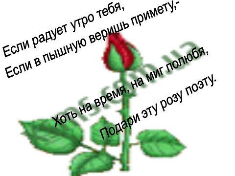 Стихи цветы