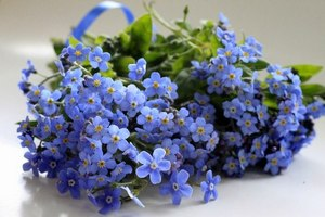 http://www.stihi.ru/pics/2013/03/30/10849.jpg