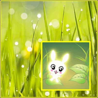 Солнечные зайчики анимация, приглашения свидание картинки