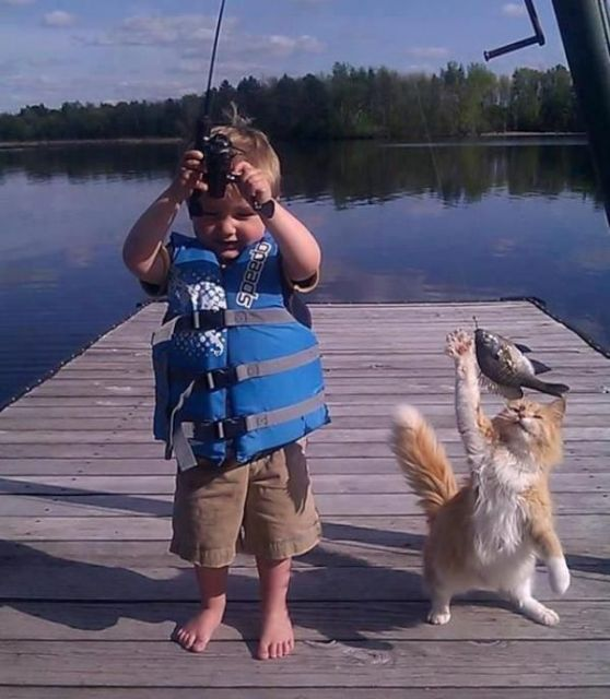 картинки для детей кот на рыбалке