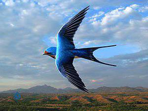 """Предпросмотр схемы вышивки  """"Полёт ласточки """".  Полёт ласточки, птицы, осень, рябина, ласточка, небо, облака, синица..."""