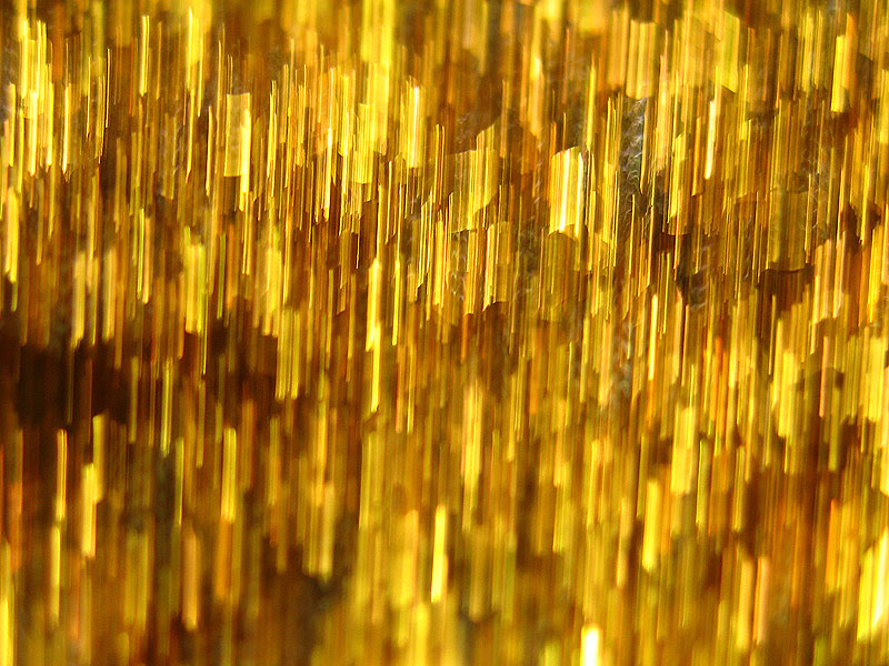 фотогалерея золотого дождя