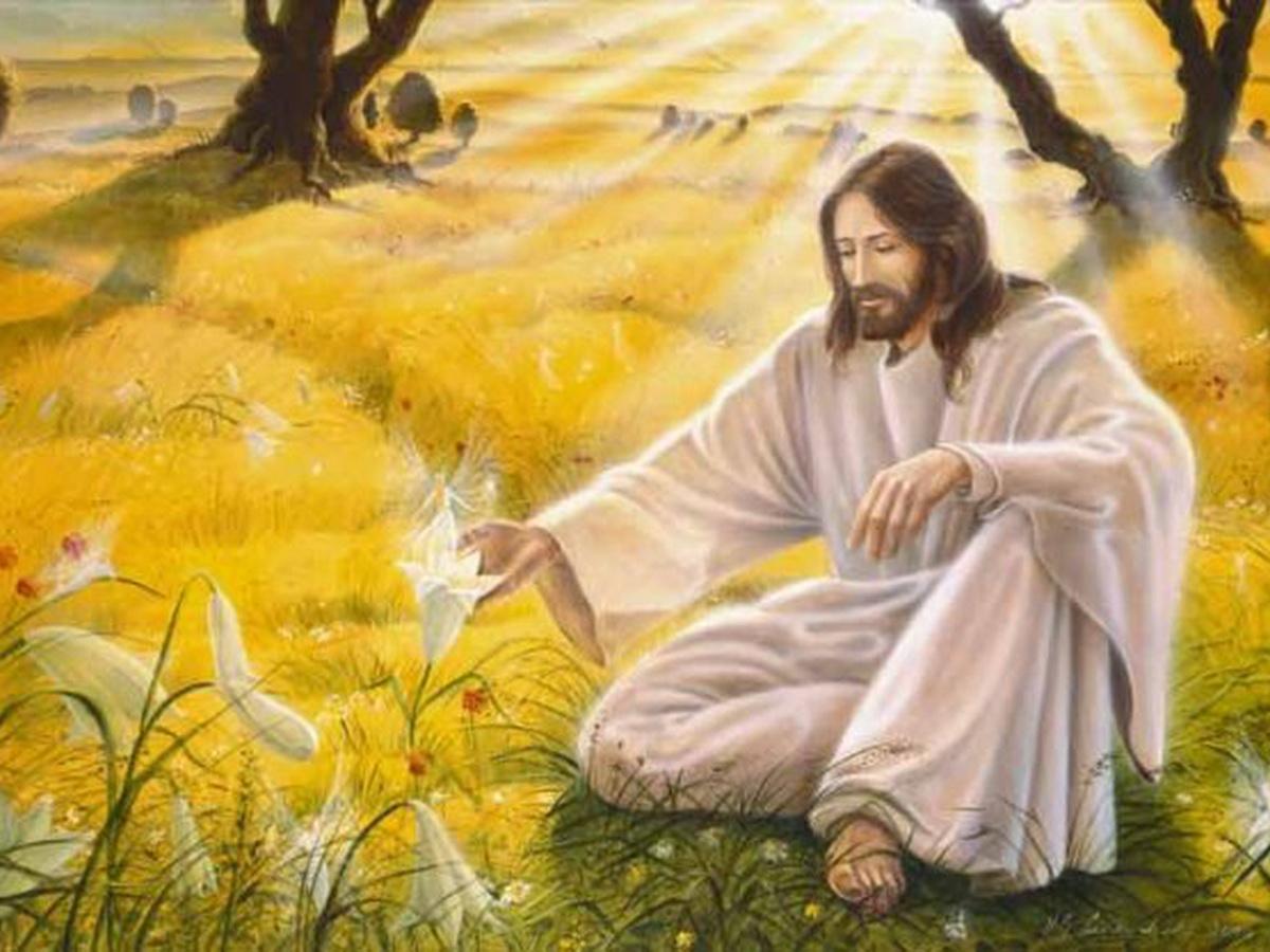 Анечка,желаю тебе Светлых побед и Божественных озарений!