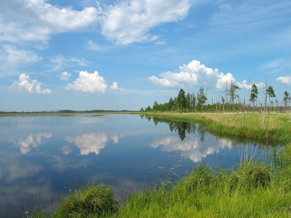 ближайшие озера в лен.обл рыбалка