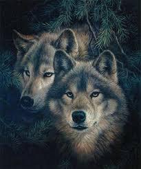"""Оригинал схемы вышивки  """"Волки 2 """". Волки 2, волк, хищник, зверь, картина, пара."""