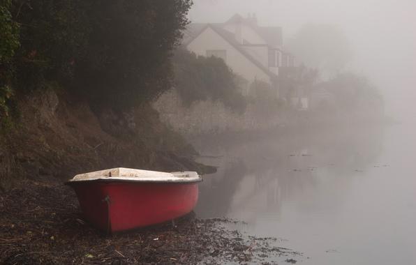 задремали лодки у причала луч окно в тумане