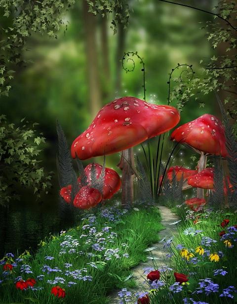 анимация на телефон волшебный лес № 357 загрузить