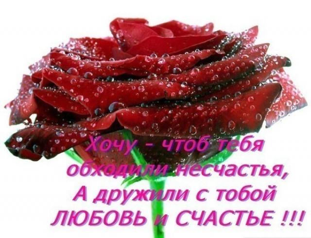 http://www.stihi.ru/pics/2013/10/31/517.jpg
