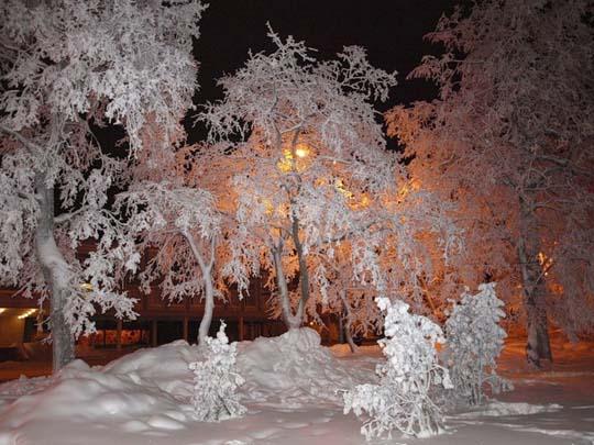 http://www.stihi.ru/pics/2013/12/01/6878.jpg