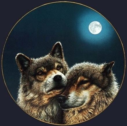 Волчья доля05