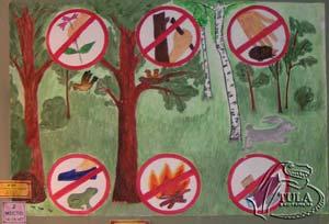 Береги лес рисунок на конкурс