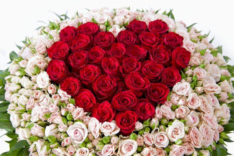 Девушке картинки, картинки с днем рождения много цветов