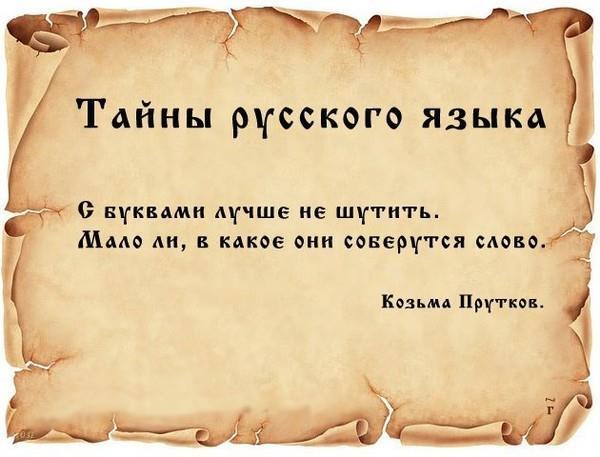 К какой группе относится русский язык