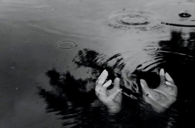 дочь поздравить к чему снится вытаскивать бревна из воды таблицы теме