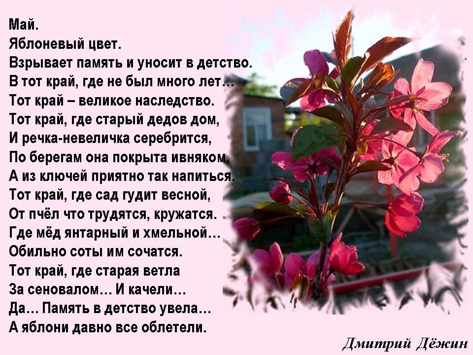 Стихи о яблоне - Что такое любовь