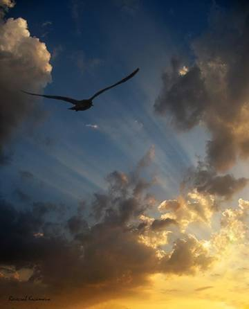 Скачать песню на облаках я полечу