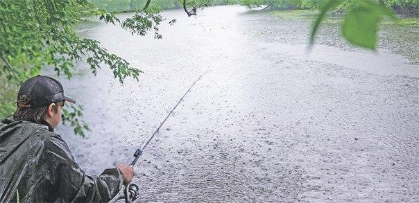 рыбалка для новичков в подмосковье