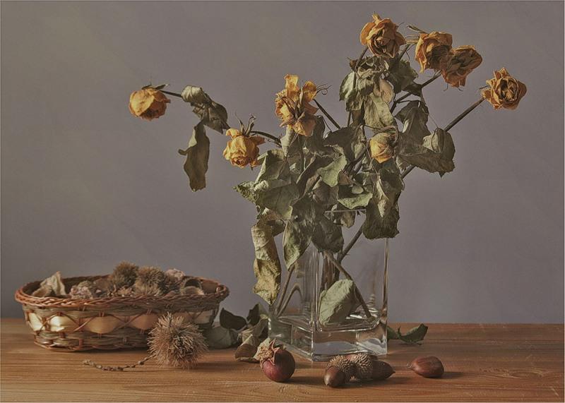 картинки с увядшими цветами