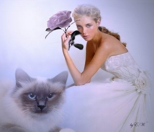 Открытка девушка кошка