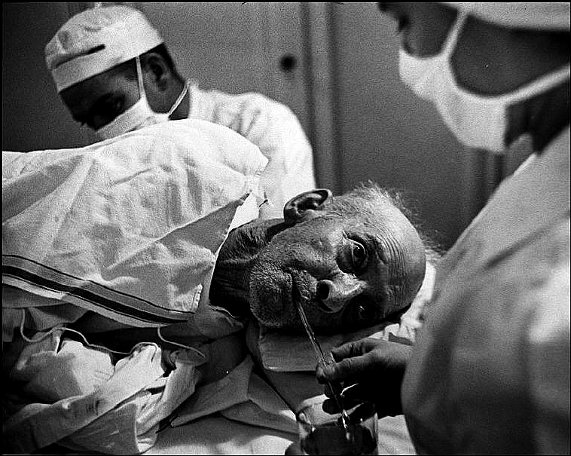 eugene smith photo essay country doctor