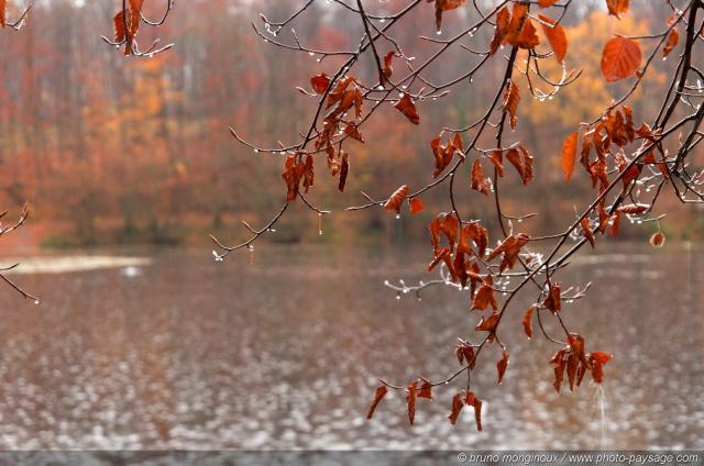 Плейкаст осень - дождь